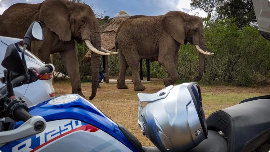 circuit moto safari afrique du sud et road trip swaziland