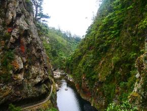 gorges de Karangahake,
