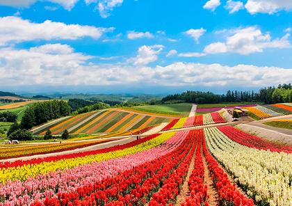 road trip et tour de l'ile hokkaido au nord du japon