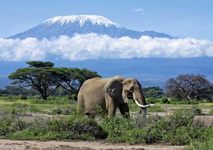 voyage moto au kenya sur les routes du kilimanjaro